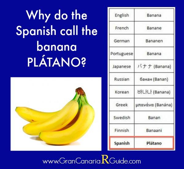 Plátano Canario: Why Is A Banana A Plátano In Spanish