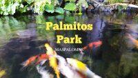 Palmitos Park Maspalomas