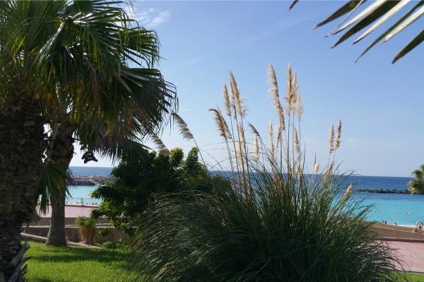 Playa de Amadores Beach, Gran Cnaria