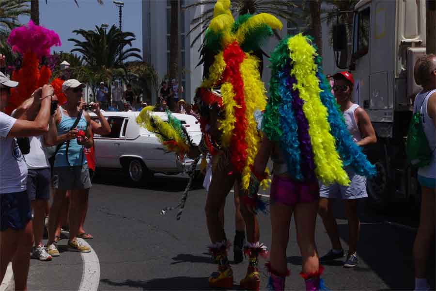 Colors of the Rainbow - the symbol of Gay Pride