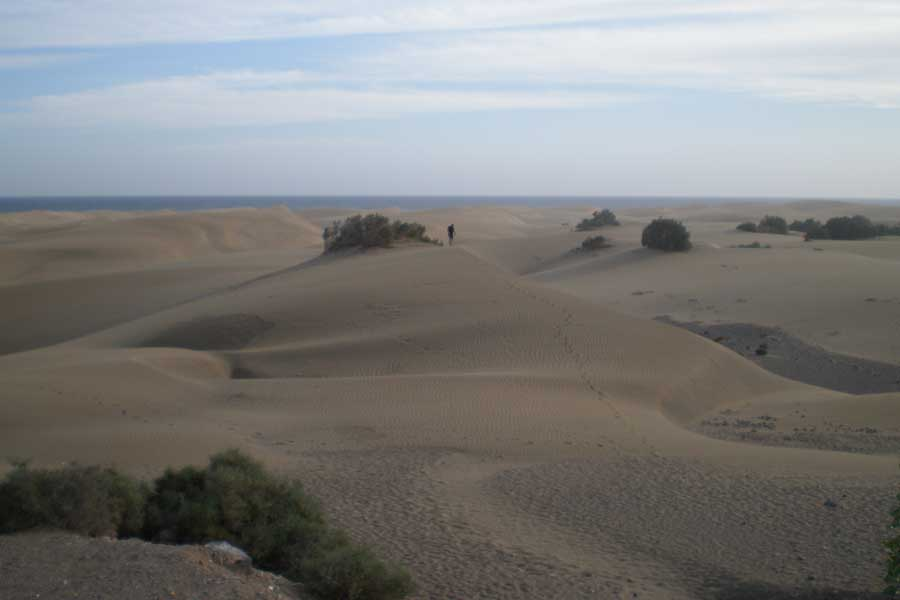 The towering dunes of Maspalomas - make sure to bring water and stay hydrated