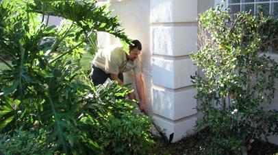 Garden Pest Control Reduma