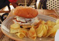 Allende 22º Burger