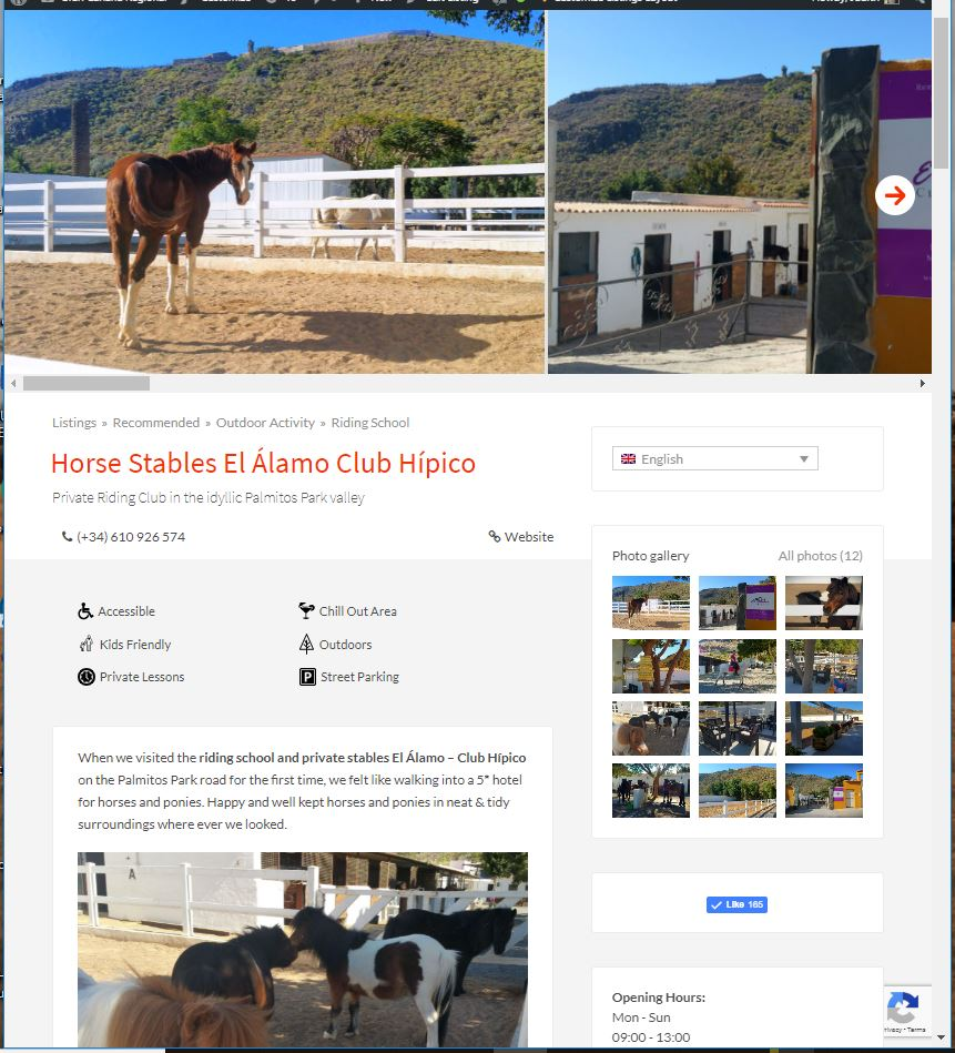 Micro Website in Gran Canaria Regional