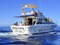Benito Yacht Charter Tour Mogan Arguineguin