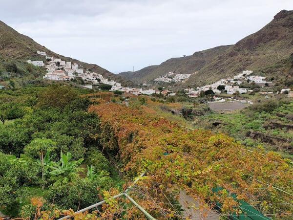 La Finca de La Laja Bodega Los Berrazales Gran Canaria