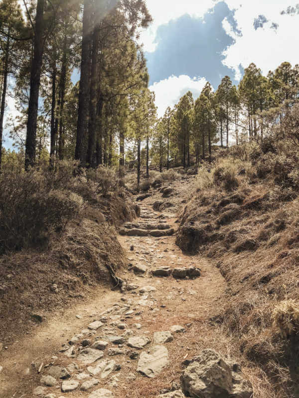 Path - Ventana del Nublo